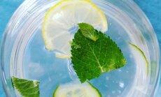 Vanduo su agurkais
