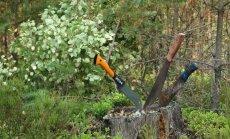 Privačių miškų savininkai įsitikinę, jog jie nenusipelno naujų mokesčių