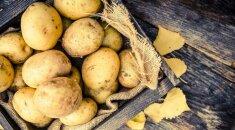 Štai kodėl jums reikia nedelsiant išmesti tokias bulves!
