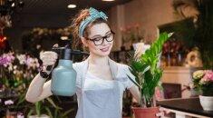 Floristai rekomenduoja kelias paprastas gudrybes: kambarinės gėlės augs kaip ant mielių