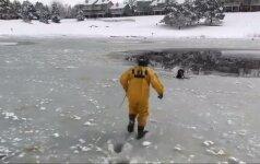 Kolorado valstijoje ugniagesiai išgelbėjo į ledinį vandenį įkritusį šunį