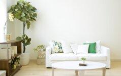 Kaip namuose sukurti jaukią ir pozityvią atmosferą