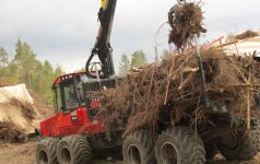 Per speigus lūžta technika, bet ne miško darbuotojai