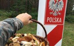 Į Lenkiją – ne tik apsipirkti, bet ir grybauti: rezultatą įvertinkite patys