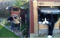 Žmonių fantazijai ribų nėra: sukalė tvirtovę savo katinui