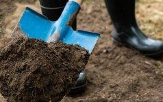 Rudeninis dirvožemio perkasimas: kuo jis naudingas?