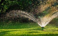 Dažnos vejos priežiūros klaidos, kurių reikia stengtis išvengti