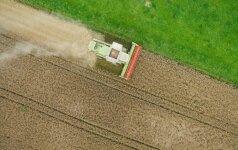 Žemės ūkio įmonės pasisakė apie ministerijos iškeldinimą į Kauną