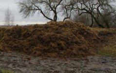 Aplinkosaugininkai nustatė mėšlo tvarkymo pažeidimus