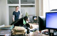 Registrų centre apsilankė darbuotojų šunys: kėlė ne rūpesčius, o šypsenas