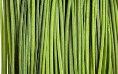 Laiškinis česnakas - tarsi brangenybė tarp daržovių