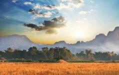 Teravados budizmo reliktai Laose