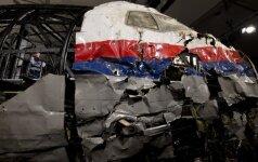 Paskelbs išvadas dėl MH17 tragedijos