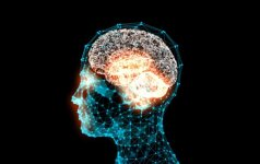 Išsiaiškino, kas labiausiai trumpina smegenų gyvenimą: galima prarasti net ketverius metus