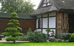 Japoniško sodo stiliai
