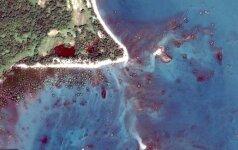 Šį vaizdą vadina mistika: kodėl pakrantė nusidažė raudona spalva?