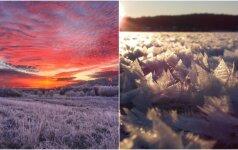 Žiema nepaliauja stebinusi: gamta dovanoja tikrus stebuklus