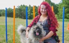 Vilnietės šuo elgiasi kaip šilkinis: viskas dėl 3 auksinių dresūros paslapčių