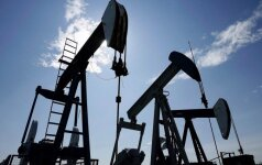 Pocių telkinyje slypi daugiau naftos nei manyta