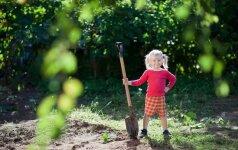 Būtiniausi darbai sode ir darže birželio mėnesį