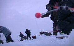 Stintų žvejyba ant Kuršių marių ledo iš arti: akimirkos nuo ryto iki vakaro