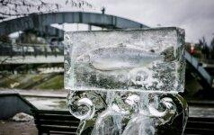Vilniuje – ledo skulptūroje įšaldyta lašiša