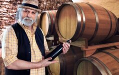Čekija kviečia į vyno šventę