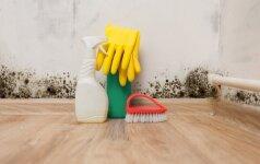Patarė, ką daryti, kad oras namuose būtų švarus