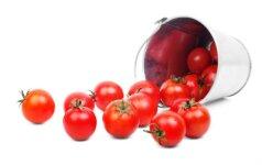 15 geriausių receptų iš pomidorų