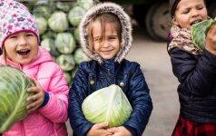 Vaikų noras laimėti šiltnamius vienus tėvus suvienijo, kiti bandė gudrauti