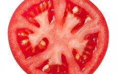 Pomidorų gidas – kokie jūsų mėgstamiausi?