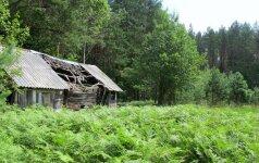Siūloma leisti atstatyti sodybas miško žemėje buvusiems jų savininkams
