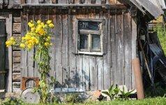 Ką daryti, kad medinis namas kuo ilgiau teiktų džiaugsmą