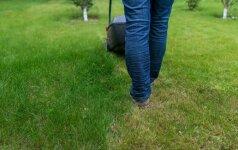Vėlų vakarą žolę pjovusį vyrą apšaudė kaimynas