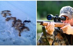 Sulaukęs kritikos medžiotojas įsiuto: žiūrėkit, kad jūsų neiššaudyčiau