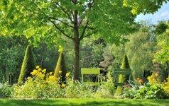 """""""Garden style"""": patarimai, kaip sukurti gražų sodą"""