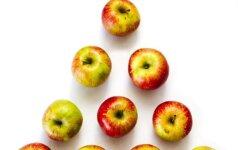 11 gero obuolių derliaus paslapčių