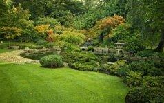 Kyoto sodas Londone: ramybe užburiantis kampelis