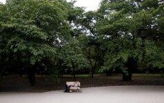 Parkas Japonijoje