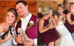 Vestuvėse nepamiršo tų, kuriems trūksta meilės: vietoj puokščių dalino šuniukus