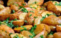 GAMINK. 13 bulvės metamorfozių