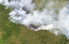 Nyderlanduose didelis gaisras nuniokojo gamtos draustinį