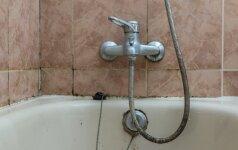 Pelėsis vonioje: kaip jo atsikratyti?