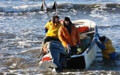 Seimas pritarė: žvejosime kaip lieps D. Grybauskaitė