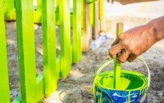 Medinės tvoros atnaujinimas: ką reikia žinoti