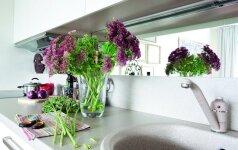 6 būdai įkvėpti gyvybės baltai virtuvei