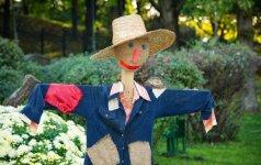 Kelios idėjos, kaip sumeistrauti daržo baidyklę