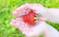 Kokie požymiai rodo, kad maistas tau žalingas?