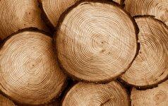 Darbams naudojama mediena: pušis