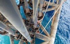 Naftos kainos smunka